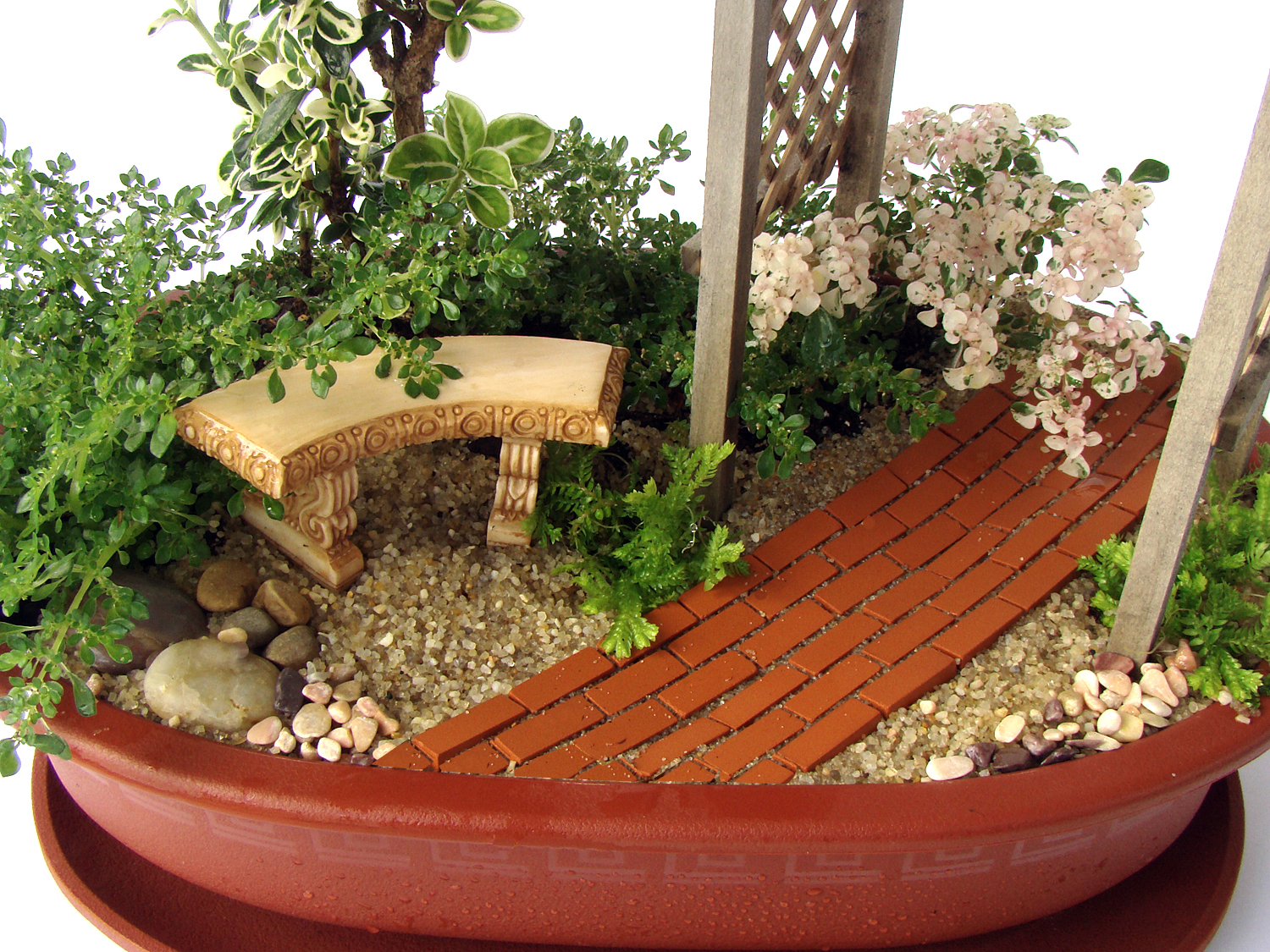 images about Dish Gardens on Pinterest Dish garden